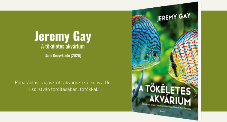 Jeremy Gay - A tökéletes akvárium