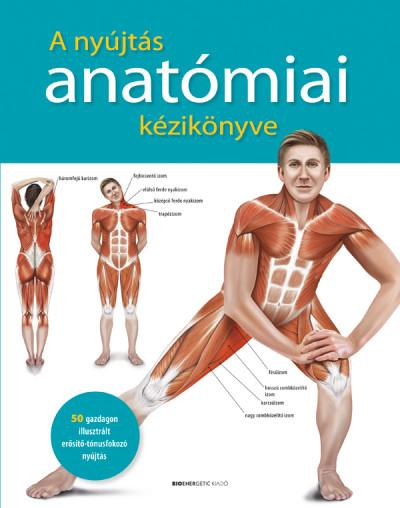 Prof. dr. Ken Ashwell - A nyújtás anatómiai kézikönyve (Borító)