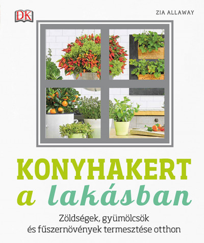 Zia Allaway - Konyhakert a lakásban (Borító)